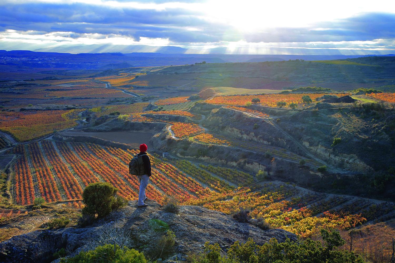 Best 10 Wine Destinations of 2013 – Wine Enthusiast Magazine