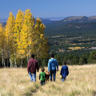 Action-Packed Days Out The Kids Will Love This Fall