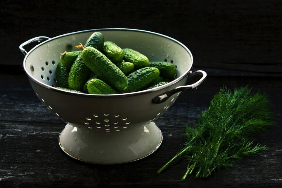 colander of cucumbers
